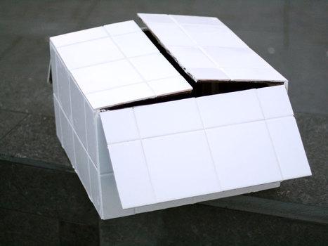 20110116154152-cardboard-box