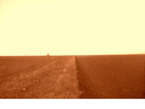 20110116154923-dvd-selandre