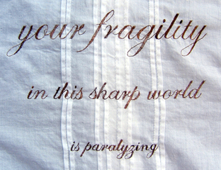 20110117094336-your_fragility_detail