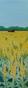 20110119095643-yellow_copy
