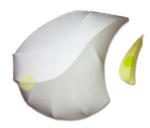 20110119134326-big_tan_white-yellow