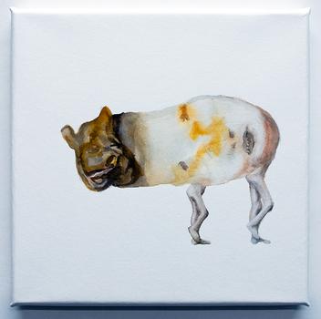 20110121221839-15meuler-tapir-liplesslegs