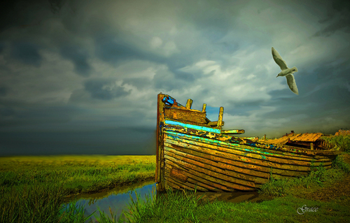 20110122073716-forgotten__old_boat_1