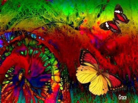20110122074112-dance_of_the_butterflies
