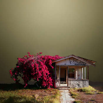 20110125102600-abandoned_house_niland_ca