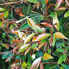 20110125131101-spring_leaves