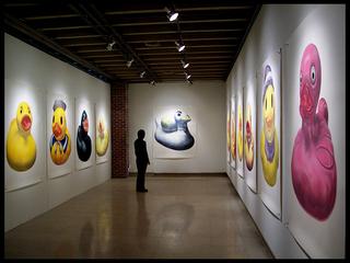 20110127102252-liam_ducks
