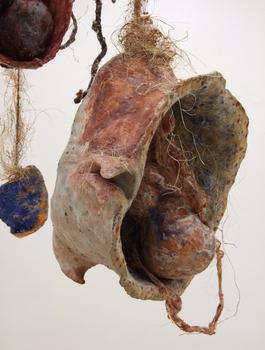 20110128124321-moldy-semilla