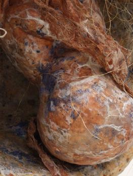 20110128124440-moldy-bebe