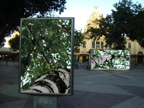 20110128125208-landscaperio1