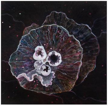 20110128181818-jellyfish2