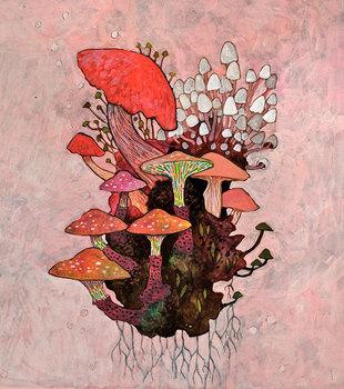 20110128182247-mushrooms2