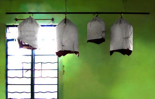 20110128194220-sai-kung_-bird-cages-2001