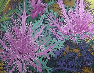 20110201153049-ornamental_cabbage