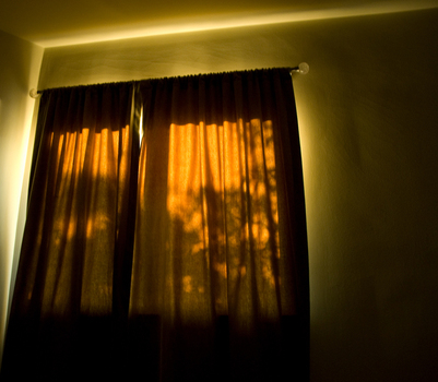 Eric_s_window___2___beverly_hills