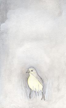 20110203142142-bird