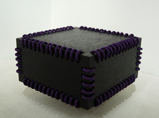 20110204153944-dsc_0235purplebox