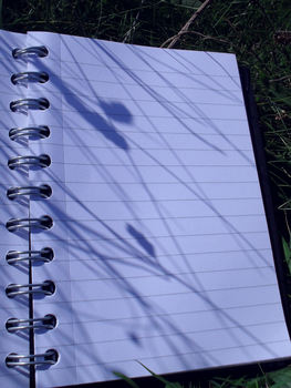 20110208055308-shadow_page
