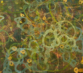 20110208105131-pinedark_cove_03