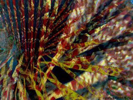 20110209223522-abstract_01e