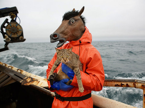 20110211091826-kitty_and_horse_fisherman