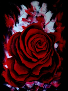 20110216010802-rose_on_fire