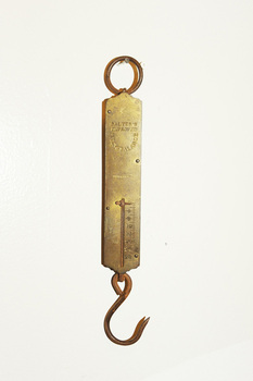 20110216094813-weight_hook