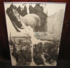 20110217115119-robert_rauschenberg_horse_silk_offset_lithograph_28