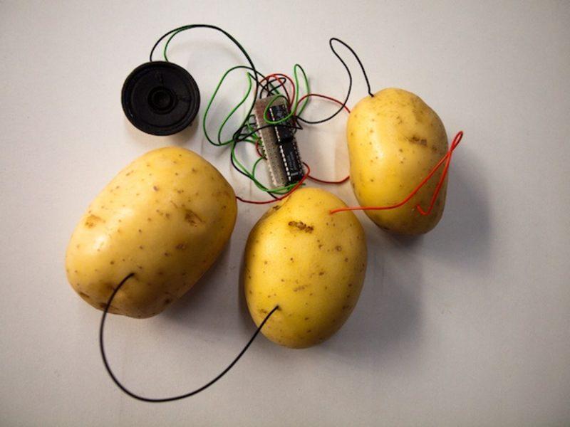 20110222182434-kleiner_fresh_music_for_rotten_vegetables