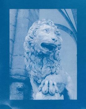20110223061236-lionii