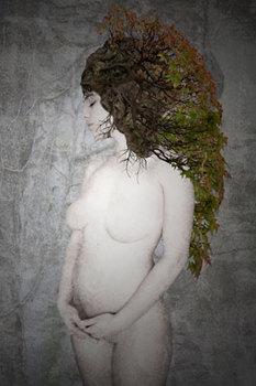20110305035444-dorian-rex---bonsai-bianco_-2011---fotomanipolazione