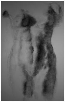 20110306101630-torso1