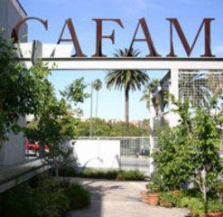 20110307141346-cafam_image