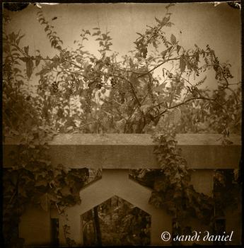 20110308072732-flora__6