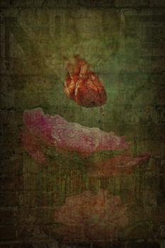 20110309204830-heart_peonyb
