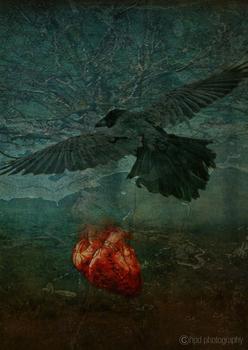 20110309211904-redheart_oakbsm2