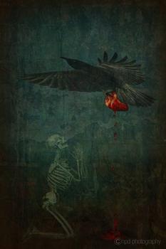 20110309205827-redheart_crow3bsm