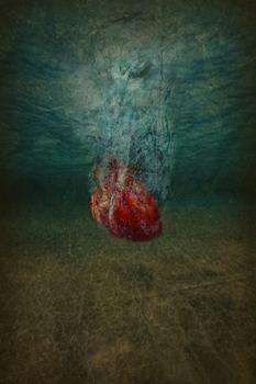 20110309210449-heart_sinkingbsm2