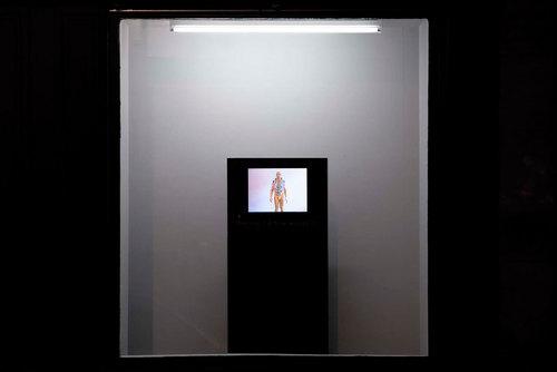 20110311030203-vitrine