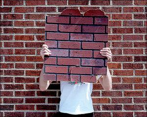20110312021240-brick