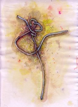 20110319185912-ebola_sudan