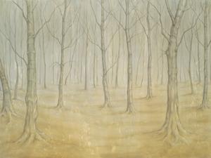 20110319191008-woodland_path