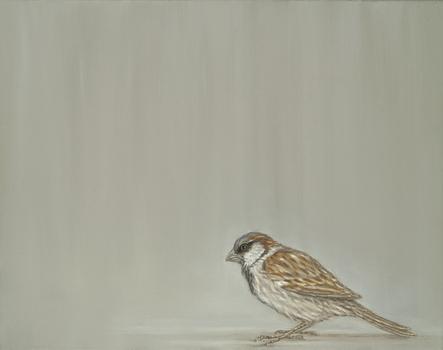 20110319191347-sparrow