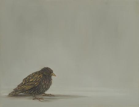 20110319192322-starling