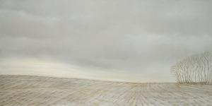 20110319192737-furrowed_field
