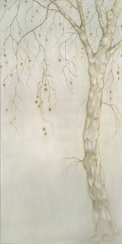 20110319192841-plane_tree