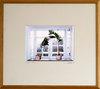 Gve_talking-trees-window-a