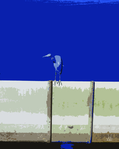 20110323170038-small_heron_on_fence_16x20