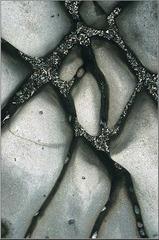 20110403101053-bsmithacrobat