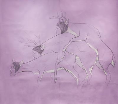 20110408084000-deer01